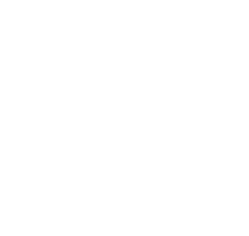 torrent securities logo icon